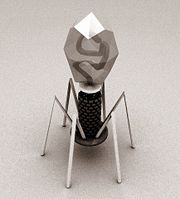 artists impression of bacteriophage